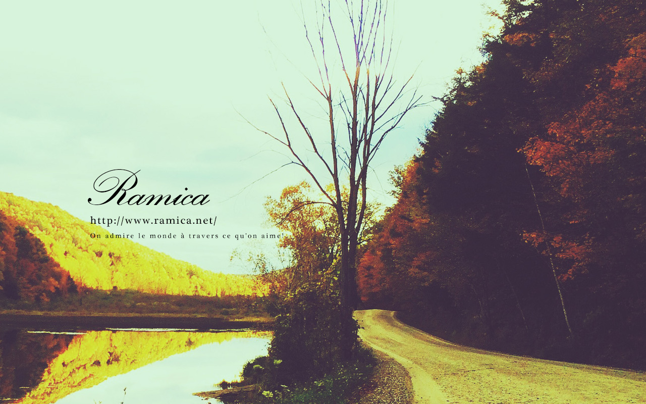 Pc パソコン用無料壁紙ダウンロード 自然を感じる散歩道 Ramica